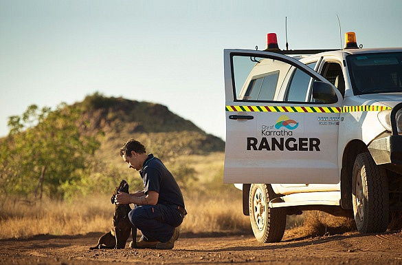 Media on Mars case study thumbnail: Aboriginal ranger and his dog next to his car
