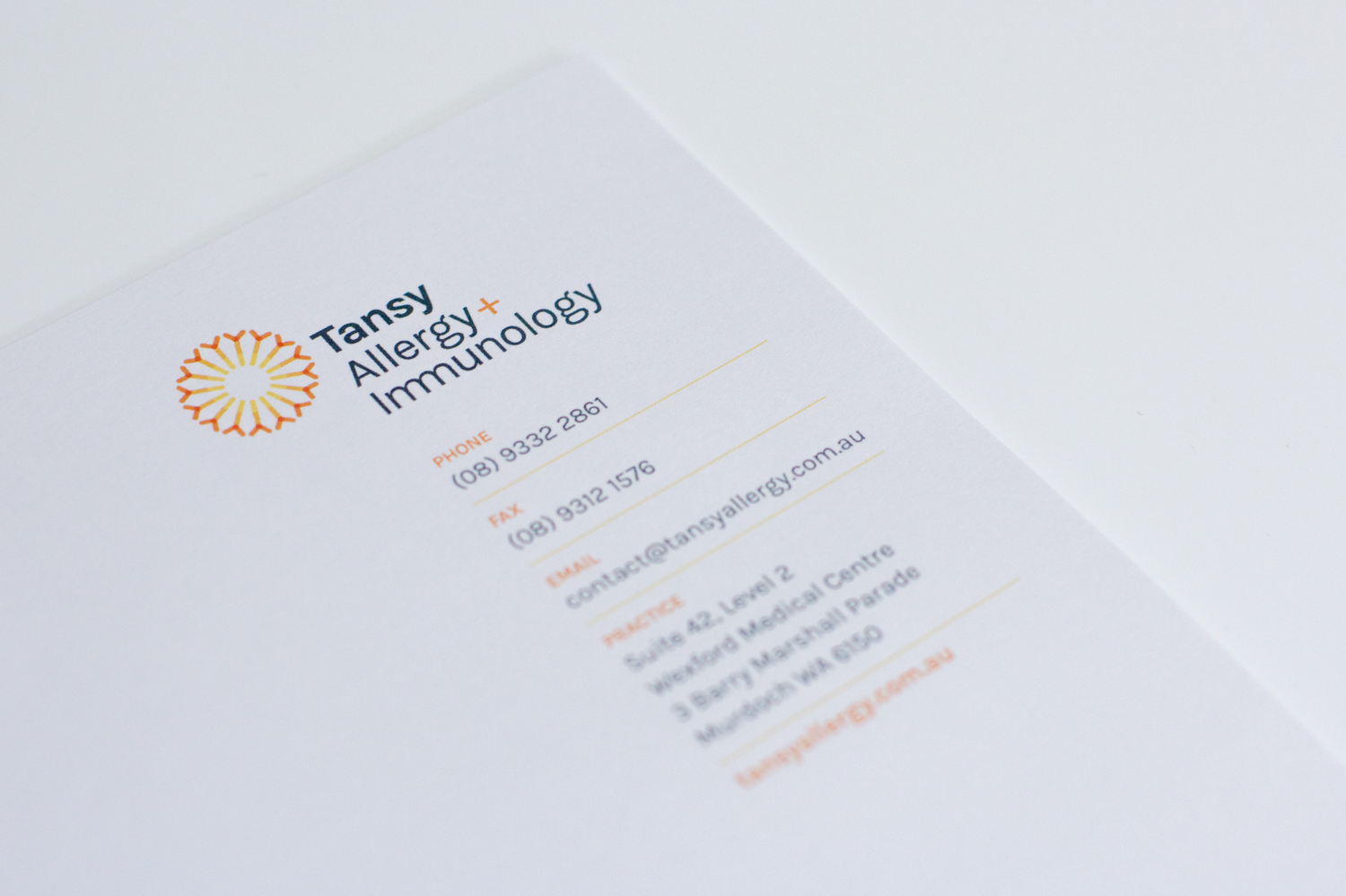 Tansy Allergy letterhead closesup
